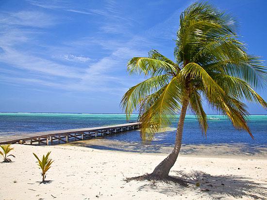 Strand auf little cayman cayman islands kaimaninseln